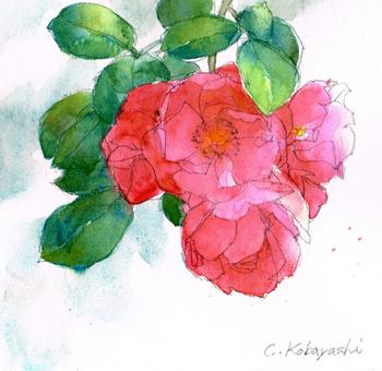 angela rose.jpg